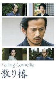 Falling Camellia
